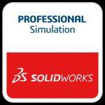 Professional - Simulation2